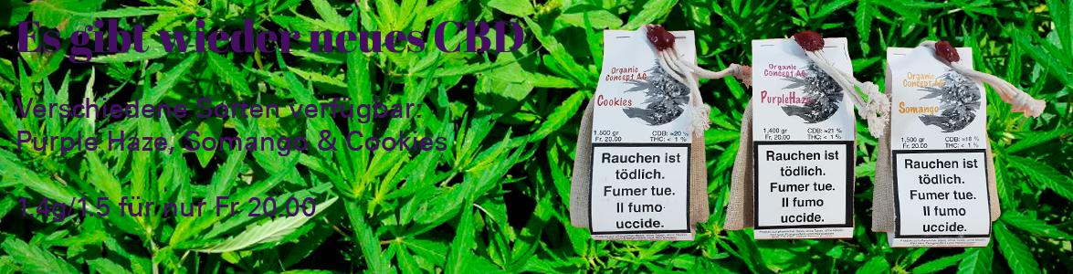Neue CBD Sorten von Organic Concept: Purple Haze CBD, Somango CBD, Cookies CBD. Für Fr. 20.- gibt es 1.5g oder 1.4g