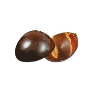 Kokos Rüstschale geschliffen kaufen