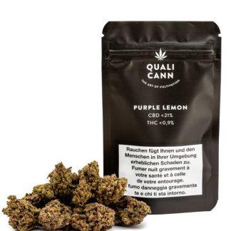 Qualicann Purple Lemon Sativa mit 21% CBD kaufen