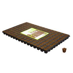 Eazy Plug 150 Stecklings-Tray