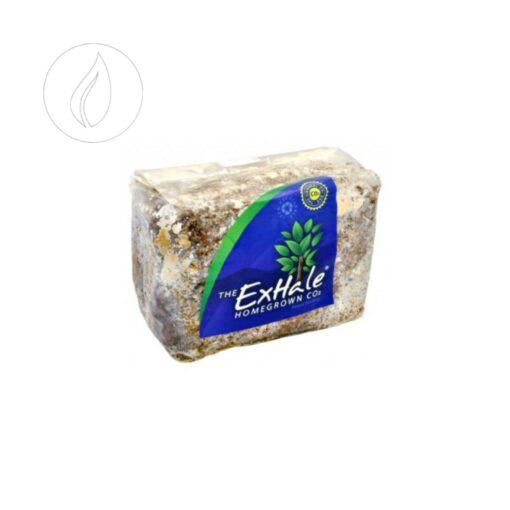 CO2 Bag Exhale kaufen online